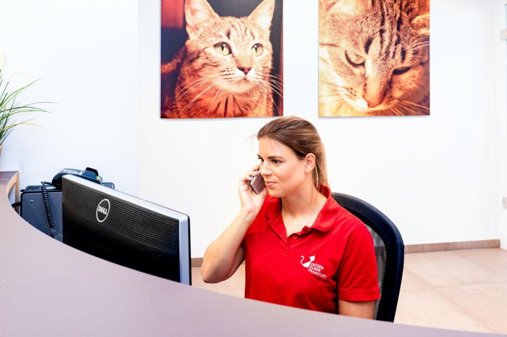 Kommunikation tierklinik 6497
